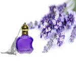 Lavender Ruh Attar