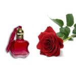 Rose Ruh Attar