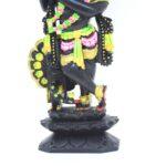 Black Krishna Fine Color